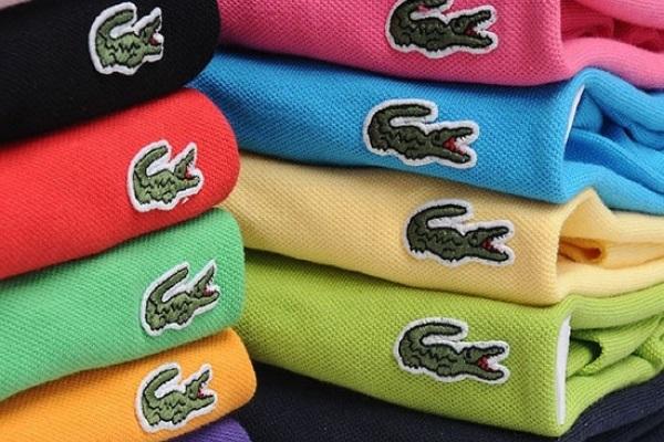 Áo thun cá sấu